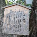 Photos: 神戸市内の写真0027