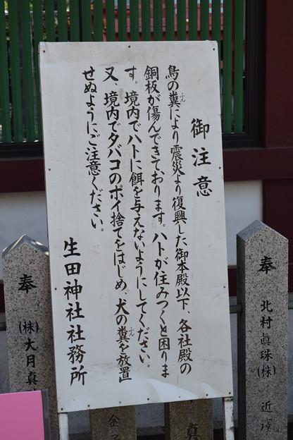 神戸市内の写真0035