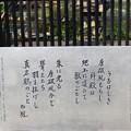 Photos: 神戸市内の写真0038