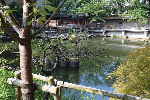 神戸市内の写真0043