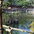 Photos: 神戸市内の写真0043