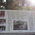 Photos: 神戸市内の写真0052