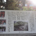 神戸市内の写真0052