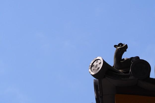 写真: 東大寺大仏殿 東楽門