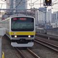 写真: E231系B7編成 (2)