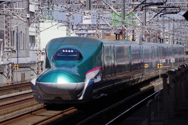 E5系U33編成  (7)