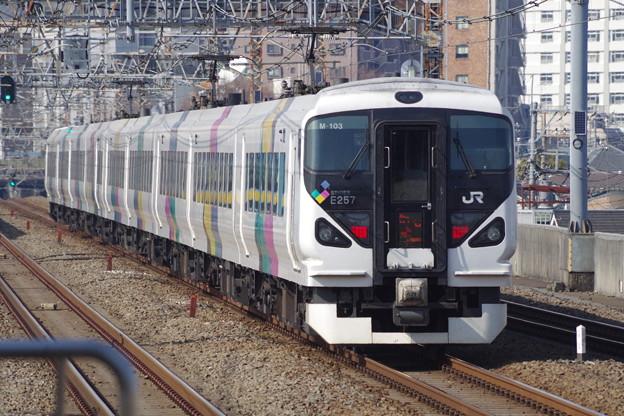 E257系M103編成 (4)