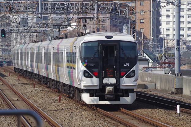E257系M103編成 (7)