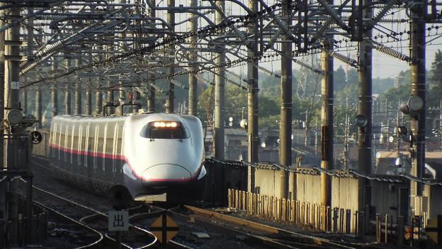 E2系J66編成  (1)