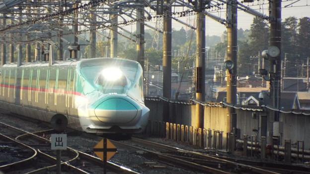 E5系U33編成  (2)