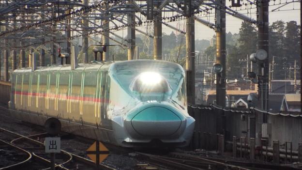 E5系U33編成  (3)