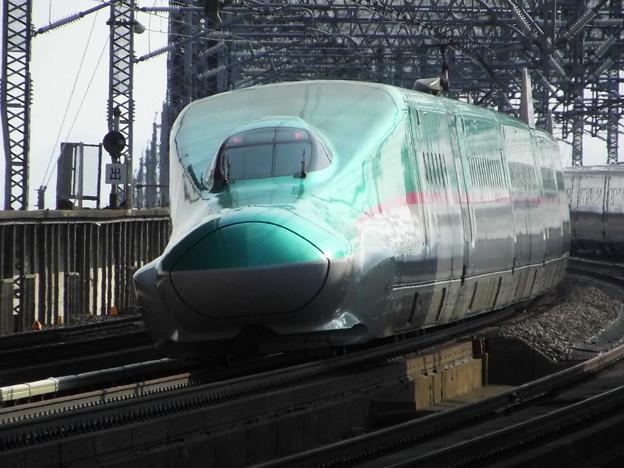 E5系U31編成 (12)