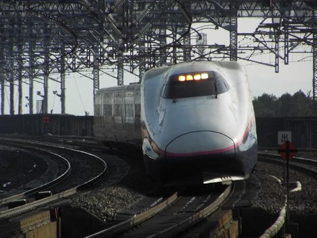 E2系J65編成 (1)