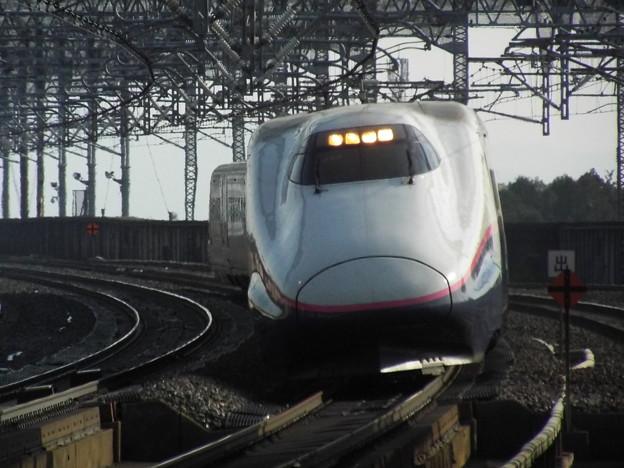 E2系J65編成 (4)