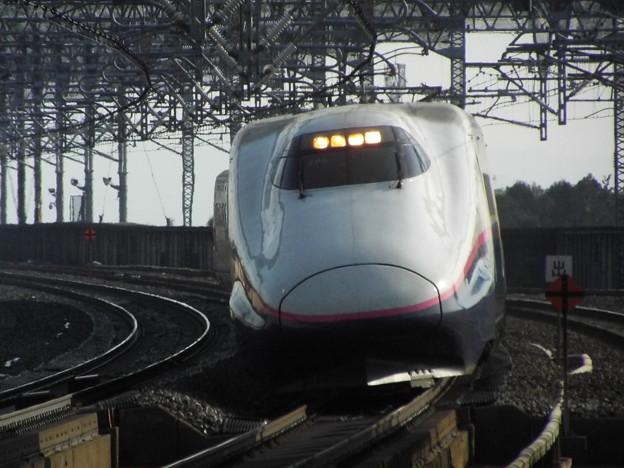 E2系J65編成 (5)