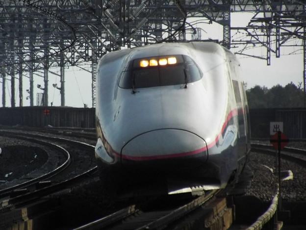 E2系J65編成 (7)
