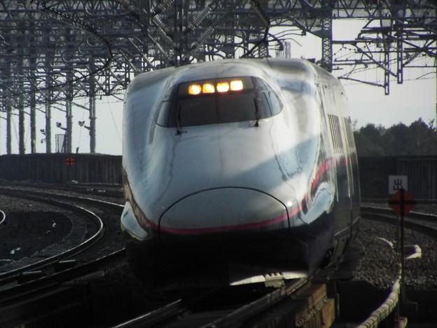 E2系J65編成 (8)