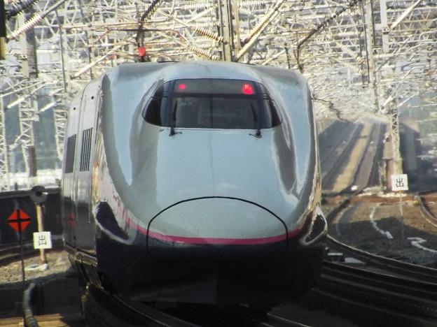 E2系J65編成 (11)