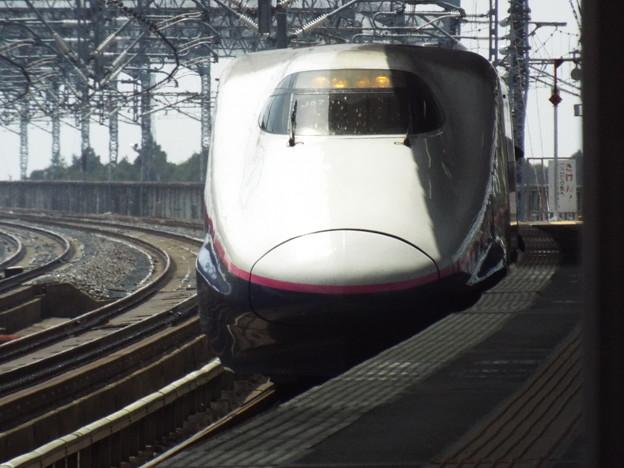 E2系J57編成 (6)