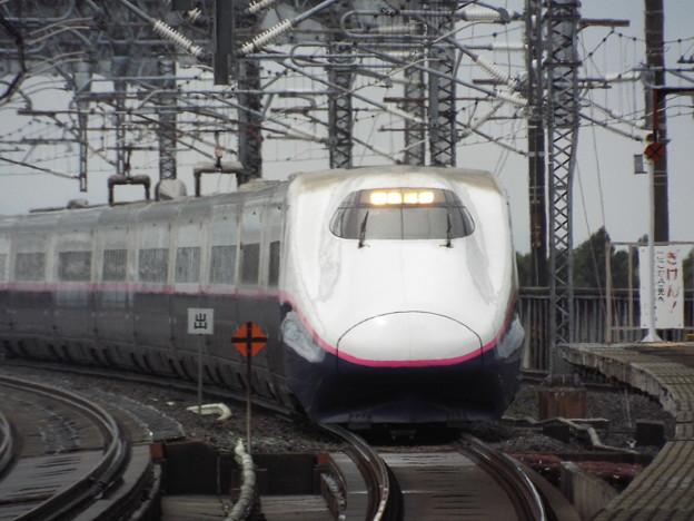 E2系J59編成 (2)