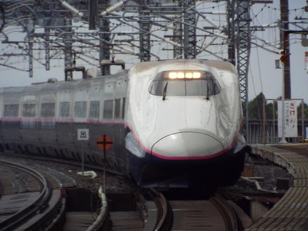 E2系J59編成 (3)