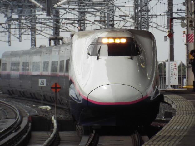 E2系J59編成 (4)