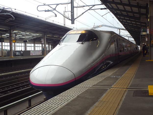 E2系J59編成 (9)