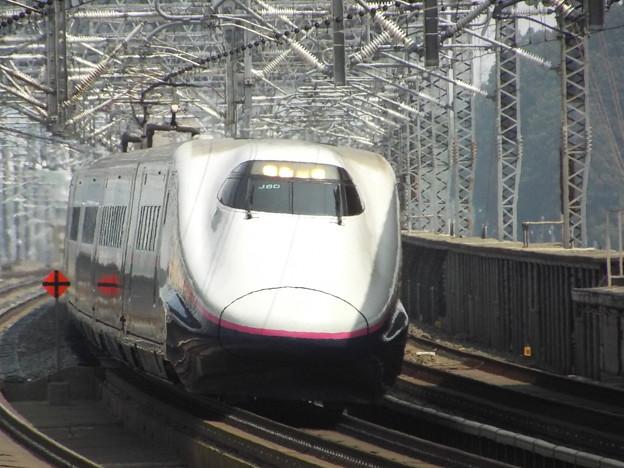 E2系J60編成+E3系L54編成  (8)
