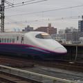 写真: E2系J14編成 (15)
