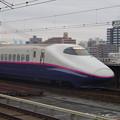 写真: E2系J14編成 (16)