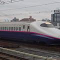 写真: E2系J14編成 (17)