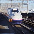 写真: E2系J13編成 (2)