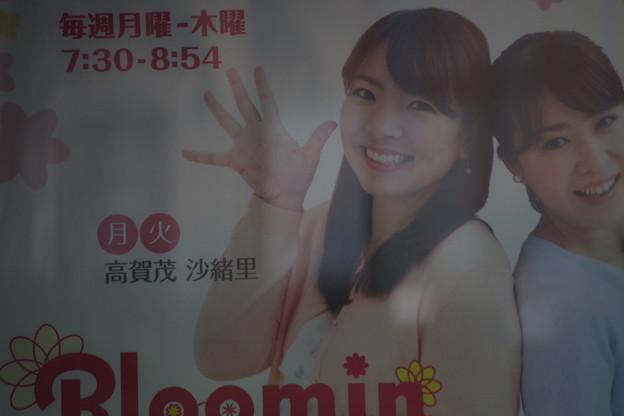 Bloomin ポスター (3)
