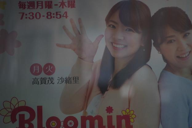 Bloomin ポスター (4)