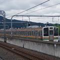 写真: 211系A61編成 (3)