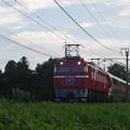 写真: EF81 98+E26系「カシオペア紀行」 (4)