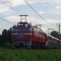 写真: EF81 98+E26系「カシオペア紀行」 (5)