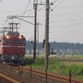 写真: EF81 81+E26系「カシオペア」 (1)