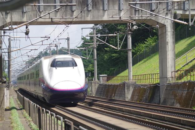 E2系J51編成  (5)