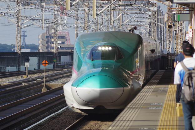 E5系U30編成 (1)