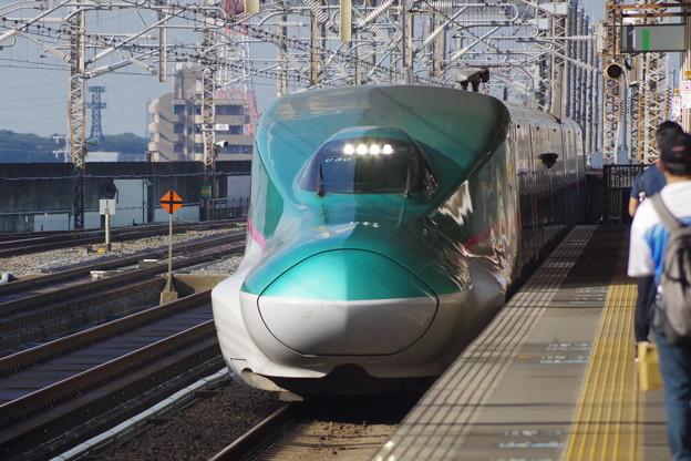 E5系U30編成 (4)