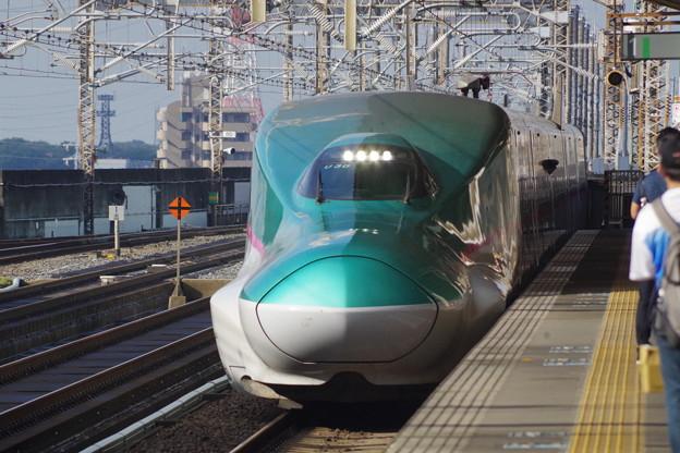E5系U30編成 (5)