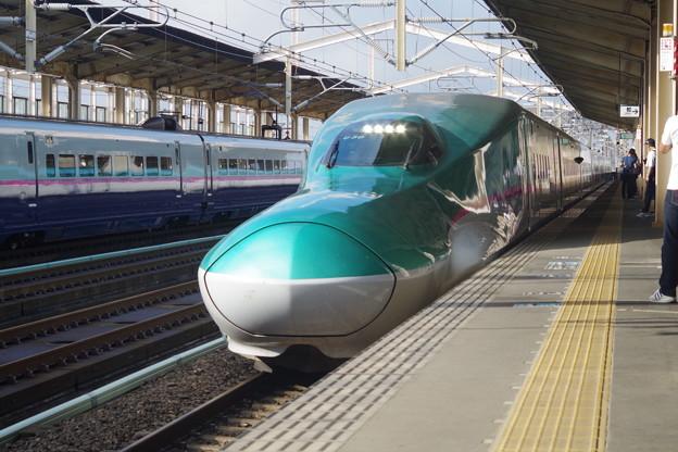 E5系U30編成 (6)
