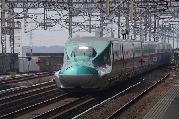 E5系U31編成 (4)