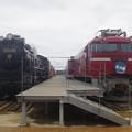 D51 1116・EF81 138 (2)