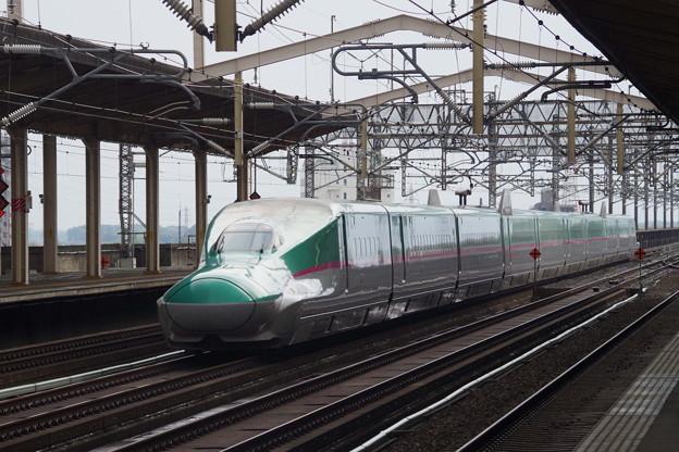 E5系U31編成  (10)