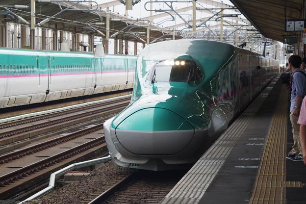 E5系U23編成 (9)