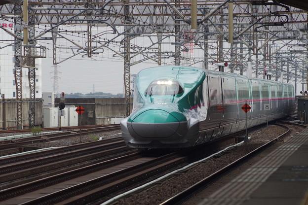 E5系U12編成  (1)