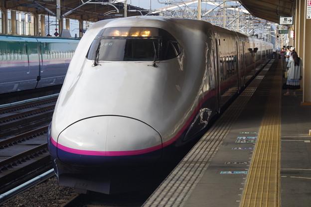 E2系J66編成 (11)