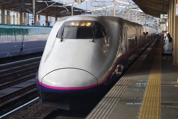 E2系J66編成 (10)